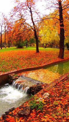 autumn love.. :)