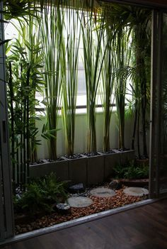 small space landscaping with cinder blocks and bamboo