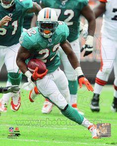 Miami Dolphins - Reggie Bush Photo Miami Dolphins Funny 79d4aea23