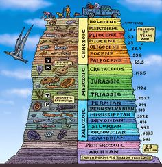 The geologic time scale helps scientists try and understand earth& past. Human beings, recently on the scene, are but a small piece of earth& history. Earth Science, Science And Nature, Illustration Book, Evolution, Historia Universal, Teaching Science, Mad Science, Science Education, Teaching Geography