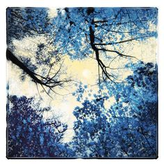 China blue,10x10, Original Signed, Fine Art altered photograph, full moon, delft blue, trees, nature decor, navy blue on Etsy, $54.00