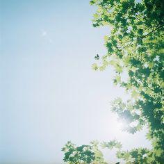 sky.   Flickr