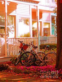 Bikes in the Yard