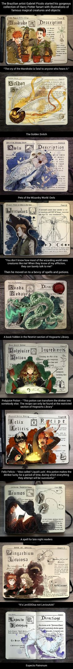 Amazing Illustrations Of Famous Magical Elements And Spells From Harry Potter