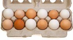 Jajca – nepogrešljiva in poceni