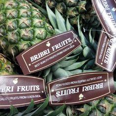 Piñas Bribrifruits #piñasdecostarica #pineapples Piñas ,pineapples ,ananas de Costa Rica ,frutas tropicales ,fruits ,mercabarna ,piñasdecostarica, mercamadrid@bribrifruitscostarica #piñas #pineapple #pineapples #ananas #frutastropicales #dieta #nutricion #salud #costarica #caribe #puravida #instanfood #piñasdecostarica #fruterias #mercados #mercamadrid #mercabarna #mercasevilla #spain #bribrifruits #disfrutadelapiña #piñasdecostarica