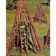Willow Cage Trellis shown