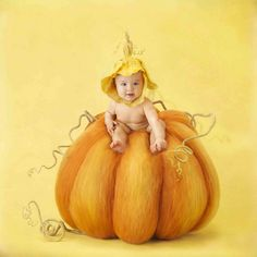 World-famous baby photographer Anne Geddes offers a Mother's Day message and a gallery of new images from her most recent book. Anne Geddes, Cute Kids, Cute Babies, Little Buds, Cute Baby Pictures, Personalized Books, Photographing Babies, Fall Pumpkins, Beautiful Babies