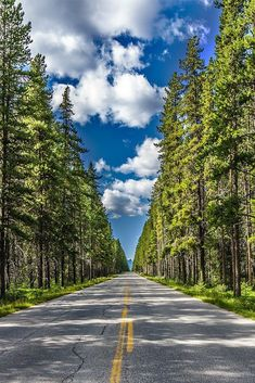 Road through the forest, Banff Canada (by Roberto Melotti) Beautiful Roads, Beautiful Places To Visit, Beautiful World, Beautiful Nature Wallpaper, Beautiful Landscapes, Fotos Do Canada, Banff National Park, National Parks, Landscape Wallpaper