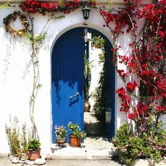 Door & Flowers Contrast