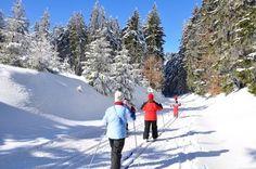 Im Winter lädt die Region natürlich für Wintersport ein. Aber auch im Sommer kommen Outdoorbegeisterte in der Region in den Genuss zahlreicher Möglichkeiten! Das Gleiche gilt auch für Kultur- und Wellnessbegeisterte! #Bad_Elster #Vogtland #Pension