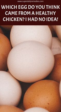 Which Egg do You Think Came from a Healthy Chicken? I Had no Idea! Herbal Cure, Herbal Remedies, Natural Remedies, Health Tips, Health And Wellness, Health Benefits, Health Care, Natural Remedy For Hemorrhoids, Oils For Sinus