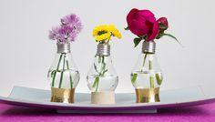 Glühbirnen-Vasen