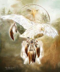 White Eagle Dreams Poster By Carol Cavalaris