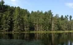 Easy Adirondack Hikes   Lake Placid, Adirondacks