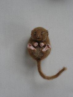 Needle Felted Hibernating Dormouse | Flickr - Photo Sharing!