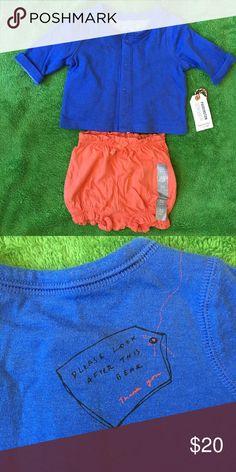Gap outfit NWT Paddington Bear sweater. GAP Shirts & Tops Sweaters