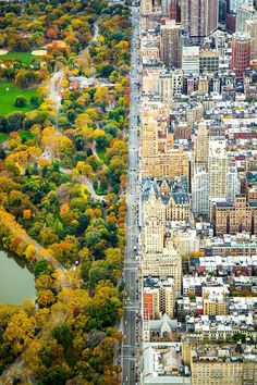 "Divide, Manhattan, by Kathleen Dolmatch. ""This photo was taken from the helicopter looking south on Central Park West – dividing the architecture and Central Park, on November 5th 2014, a day before my 27th birthday. The flight was my birthday gift."""