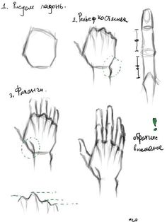 How to draw palm / hand