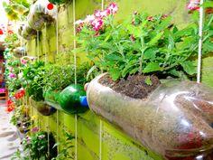Ideas originales para reciclar en casa: 29 cosas que nunca pensaste que podrían tener una segunda vida Cristina Fernandez, Plants In Bottles, Plantation, Plastic Bottles, Ideas Para, Home Accessories, Recycling, Planters, Exterior