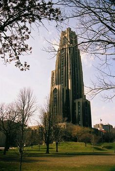 Pitt in Autumn!