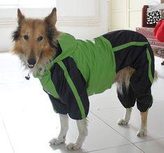 Large Dog Clothes wholesale Dog Raincoat