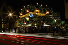 Friday Photos: It's Christmas Time - A veritable Christmas forest at The Churchill Arms pub, by Ian Wylie| Londonist