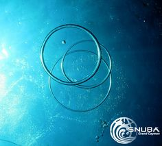 Bubble rings! -- SNU