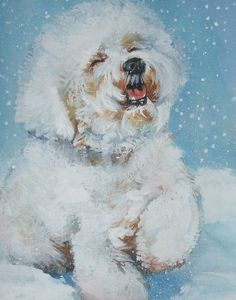 I never saw snow.  This guy sure looks like he's having fun!   Bichon Frise art CANVAS print of  LA Shepard by TheDogLover, $39.99