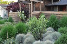 20 Landscaping Ideas Using Grass Plants | Home Design Lover