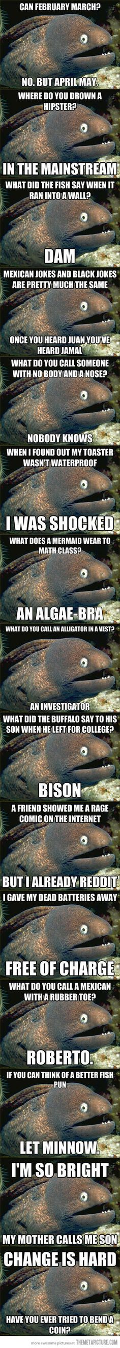 The Best of Bad Joke Eel idk why I think this is so flipping hilarious