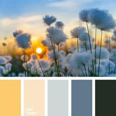 Warm Color Palettes | Page 19 of 56 | Color Palette Ideas