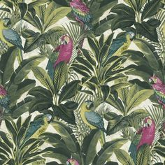Exotic - Rain Forest - Parrots - Macaw - Pink / Yellow / Green - Wallpaper