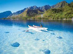 Bora Bora y mantas rayas
