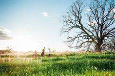 Photography-GeneralMarch 1, 2015 field of dreams By Danielle Hatcher