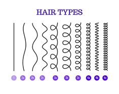 What Is 4B Hair Texture? Your Guide to Understanding 4B Hair! Oil For Curly Hair, Curly Hair Types, Types Of Curls, Hair Type Chart, Type 4 Hair, 4b Hair, Coily Hair, Cantu Curls, Black Hair Magazine