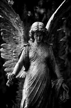 Shadowed Angel :: Unknown Photograph