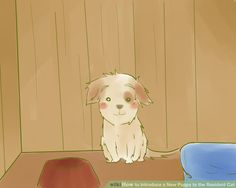 Image titled Introduce a New Puppy to the Resident Cat Step 1