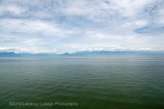 West Coast - LADYBUG COTTAGE PHOTOGRAPHY #7