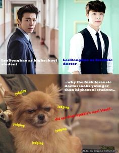ELF Problem : What is Lee Donghae made from?.... | allkpop Meme Center