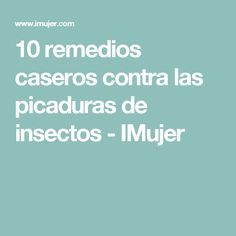 10 remedios caseros contra las picaduras de insectos - IMujer