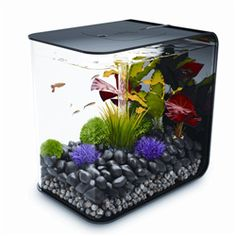 $149 BiOrb 4 gallon tank