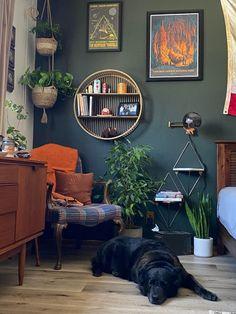 reddit: the front page of the internet Art Corner, Cozy Corner, Deco Pastel, Living Room Decor, Bedroom Decor, Bedroom Corner, Dog Rooms, Cozy Nook, Cozy Place