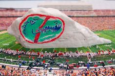 See you later, gator. Just wait till next year. Remember, you can get a UT Dry Erase Rock today and start taunting gators now.