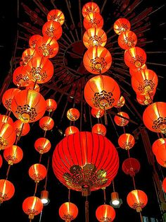 Lanterns http:// The lanterns is a sign of celebration and joy.Chinese Lanterns http:// The lanterns is a sign of celebration and joy. Chinese Theme, Chinese Style, Chinese Art, Chinese New Year Decorations, New Years Decorations, Dragons, Art Asiatique, Red Lantern, Ancient China