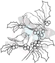 pergamano - Page 2 Magenta Cling Stamp - Christmas Holly Birds Bird Embroidery, Christmas Embroidery, Embroidery Patterns, Stitch Patterns, Christmas Coloring Pages, Coloring Book Pages, Christmas Colors, Christmas Art, Xmas