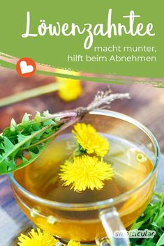 Dandelion tea cheers you up, helps you lose weight and is an ideal fasting companion Le Diner, Healthy Eating Recipes, Eating Plans, Detox Drinks, Beautiful Gardens, Cucumber, Herbalism, The Cure, Lose Weight