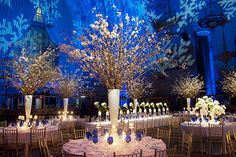 Reception Décor    Snowflakes projected onto the walls mixed with blue uplighting give off a frosty feel.