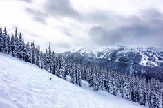 Want to become a ski instructor? Take our 4 week course and secure your paid ski season job in Whistler teaching kids how to ski. Get started now on our best project in Canada. Ski Season, Gap Year, Whistler, Skiing, How To Become, Canada, Travel, Outdoor, Image