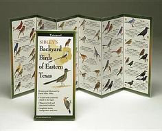 #Sibley's back. birds of #eastern #texas,  View more on the LINK: http://www.zeppy.io/product/gb/2/391338025100/